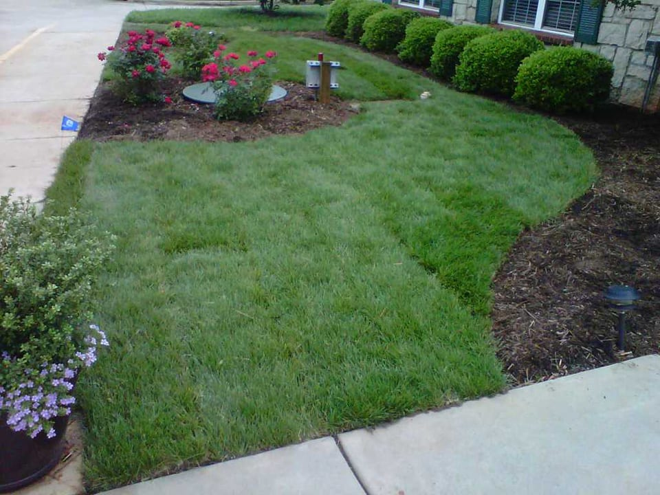 EnviraScape LLC | Green grass nicely mowed surrounding by various landscaping scenes with mulch, green shrubbery, and bright, colorful flowers