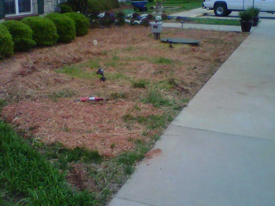 EnviraScape LLC | Fresh mulch placed in a lanscaped setting between green bushes and a sidewalk