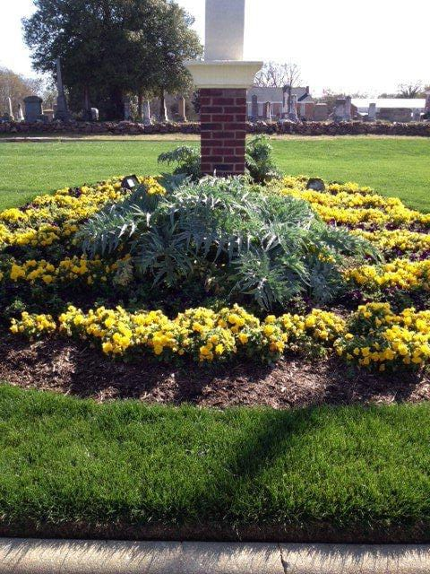 EnviraScape LLC | Yellow flowers surrounding by mulch around a business sign