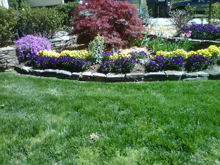 EnviraScape LLC | Bright purple and yellow flowers surrounded by a stone motif around a small red leafed tree