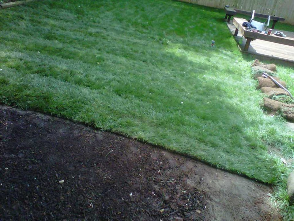 EnviraScape LLC | Lush, dark green grass beautifully trimmed and maintained