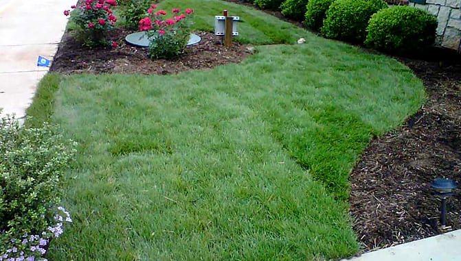 EnviraScape LLC | Manicured lawn with mulch and floral landscaping